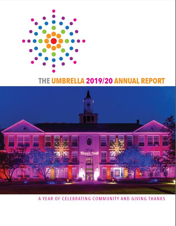Annual Report 2020 Cover - PDF Download