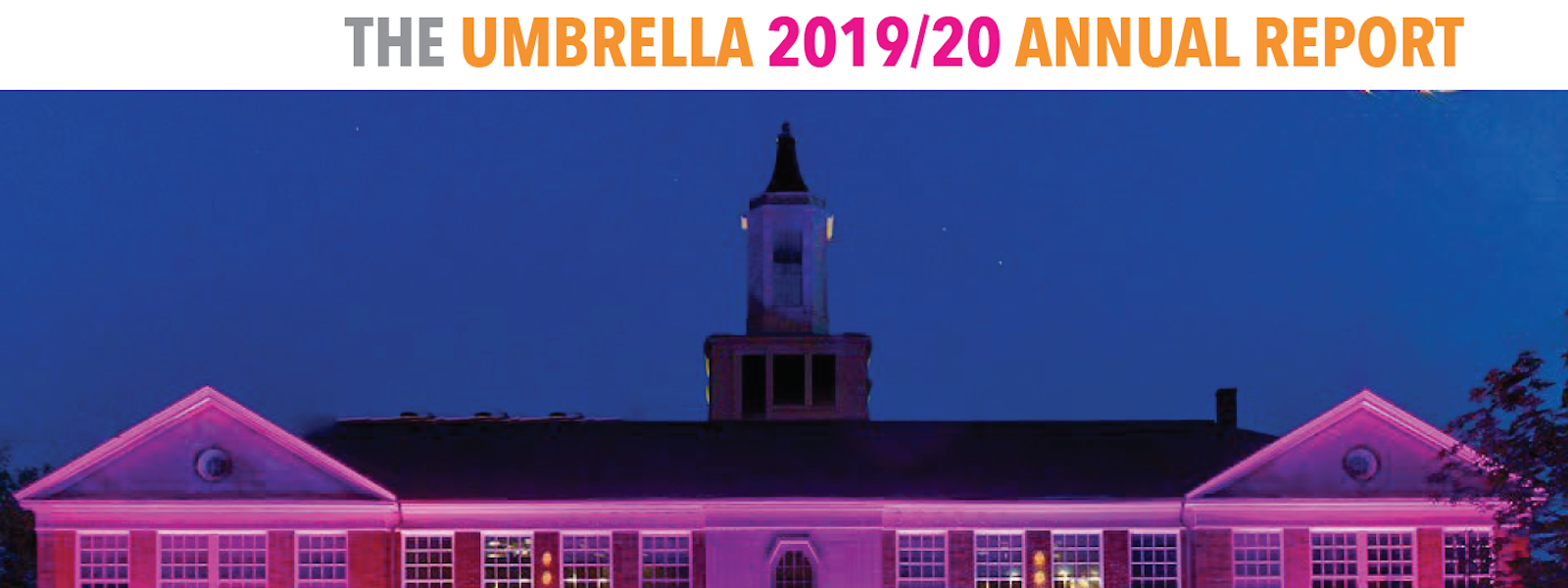 2020 Umbrella Arts Center Annual Report Cover