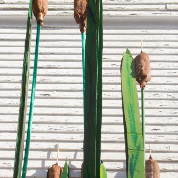 Cattails: Each of these 23 cattails is in perfect condition and  stand majestically at up to 10 feet high.  Adopt one or all! One cattail requires 1 person to carry.