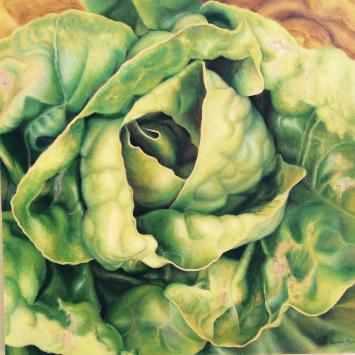 Sarah Paino - Lettuce