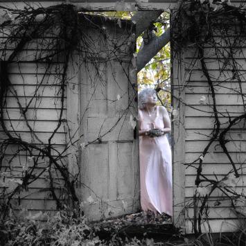 Nancy Roberts Photographer