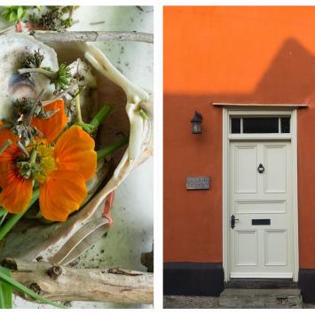 Orange Flower and House Cynthia Katz